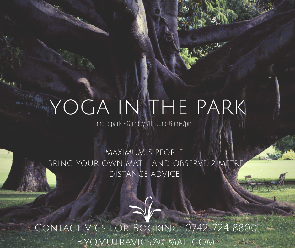 Yoga in Mote Park
